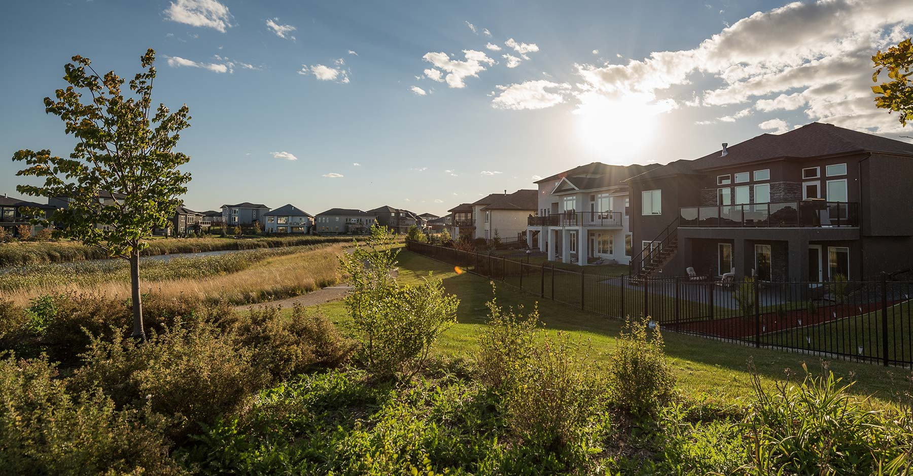 Homes backing onto trails and wetlands